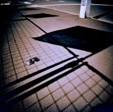 sunnies_shadows_web