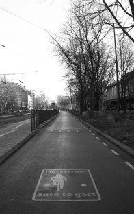 Photo7_bikes