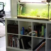 Aquariumunterschrank
