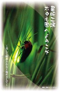 大同特殊鋼の星崎工場「ホタル園」02