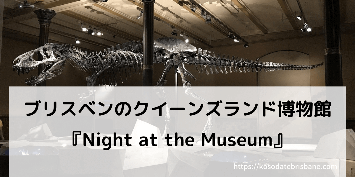 ブリスベンのクイーンズランド博物館で行われるイベント『ナイトミュージアム』のアイキャッチで使う夜の博物館と展示されている恐竜のスケルトンの写真