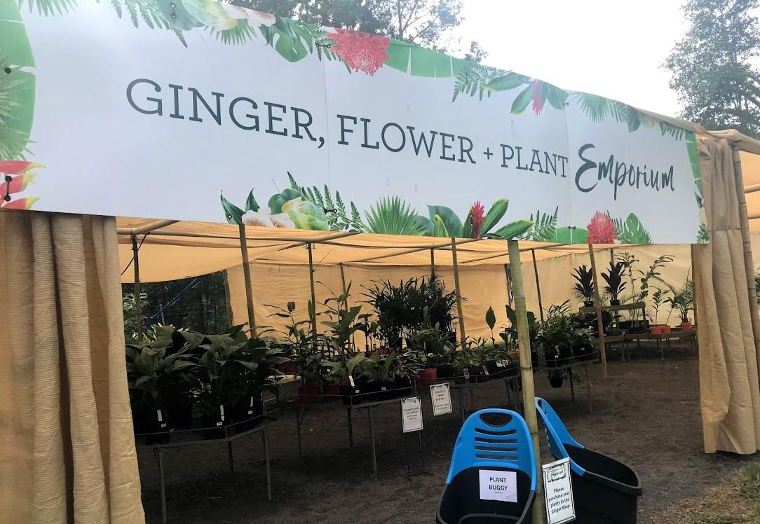 ジンジャーファクトリー内の植物売り場。