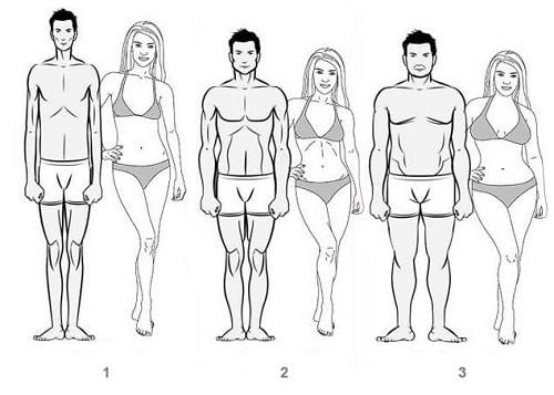 pierderea în greutate pentru femelele endomorf