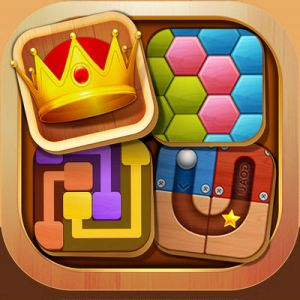 Puzzle King