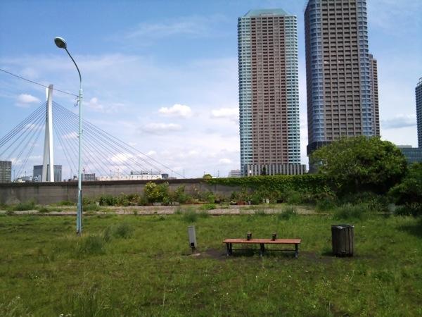 新富町の空き地