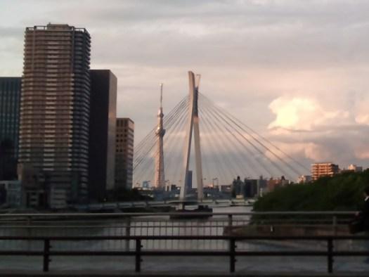 佃大橋から東京スカイツリーのトリミング画像