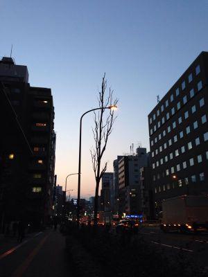 空の青さが残る夕空