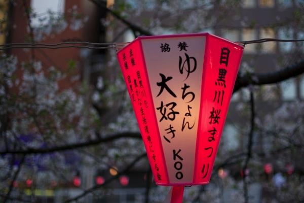 目黒川の提灯