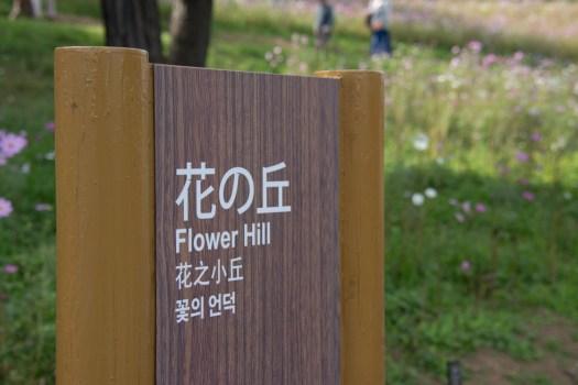 国営昭和記念公園の花の丘の看板