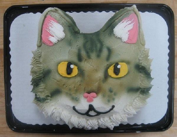 торт мордв кота
