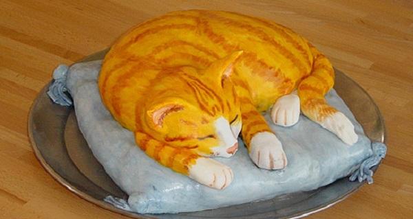 торт рыжий кот