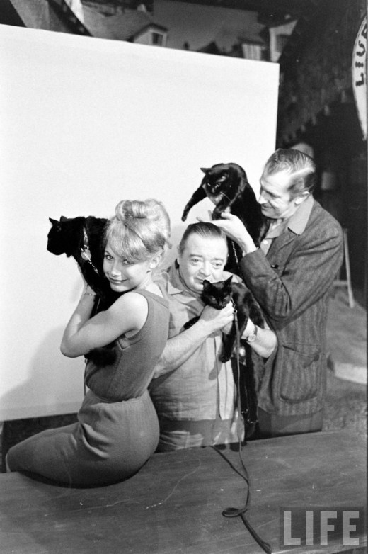 Black Cat Auditions In Hollywood, 1961 (14)