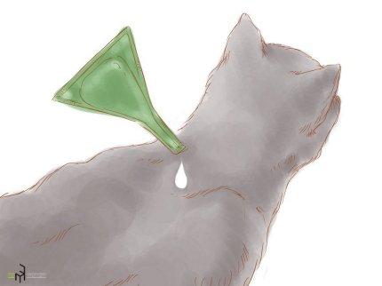 Капайте капли на холку кошки