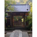 壽福寺 格調高く政子・実朝・栄西ゆかりの寺、着物の撮影に向いています。アクセスデータ付き。
