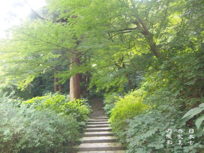 瑞泉寺 本堂に向かう石段