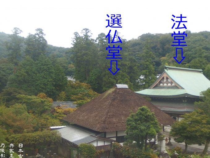 円覚寺 松嶺院 法堂 千仏堂を眺める。