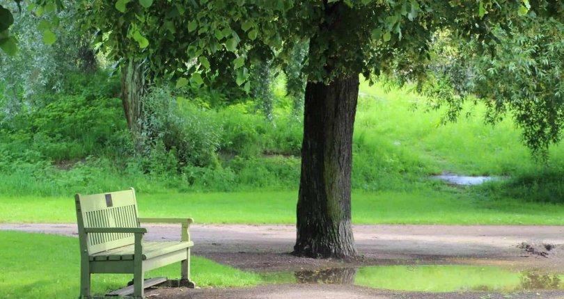 Hanki koti puiston läheltä niin voit paremmin.