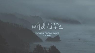 OneRepublic – Wild Life Lyrics