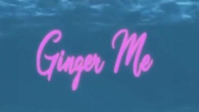 Hamisa Mobetto Ft Singah - Ginger Me Lyrics