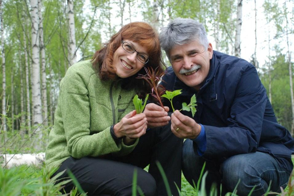 Villivihanneksien käyttöön kannustavat Raija ja Jouko Kivimetsä hortoilevat kesäisin Rääkkylässä, sillä kaksikko mökkeilee Haapasalmella.