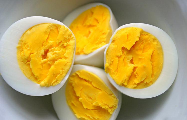 Можно ли давать котенку вареное яйцо: плюсы и минусы этого продукта. Можно ли давать кошке яйца? Можно ли давать яйца котенку