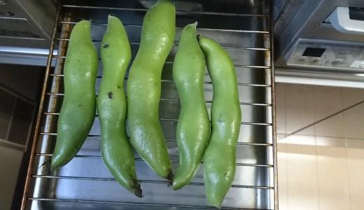 【簡単】【美味】空豆の一番簡単な食べ方。グリルがあればすぐできる
