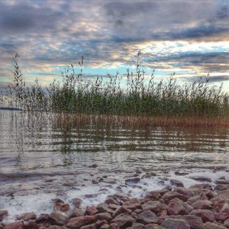 Vuokramökin merenranta on loiva. Vesirajassa nyrkinkokoisia kiviä.