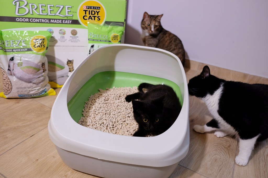 Purina Tidy Cats Breeze testy