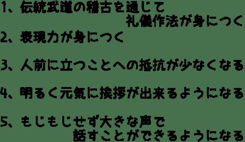 伝統武道の稽古を通して礼儀作法が身につく 表現力が身につく 人前に立つことへの抵抗が少なくなる 明るく元気に挨拶が出来るようになる もじもじせず大きな声で話すことができるようになる