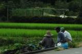 草刈りロボットで高齢者の離農防げ 出雲 /島根
