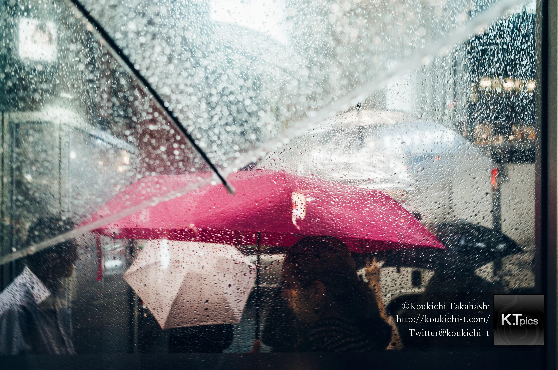 永遠のソール・ライター展特集NHK Eテレ「日曜美術館」で写真掲載!再放送は2月16日。写真家ソール・ライター最新情報 2020年2月9日
