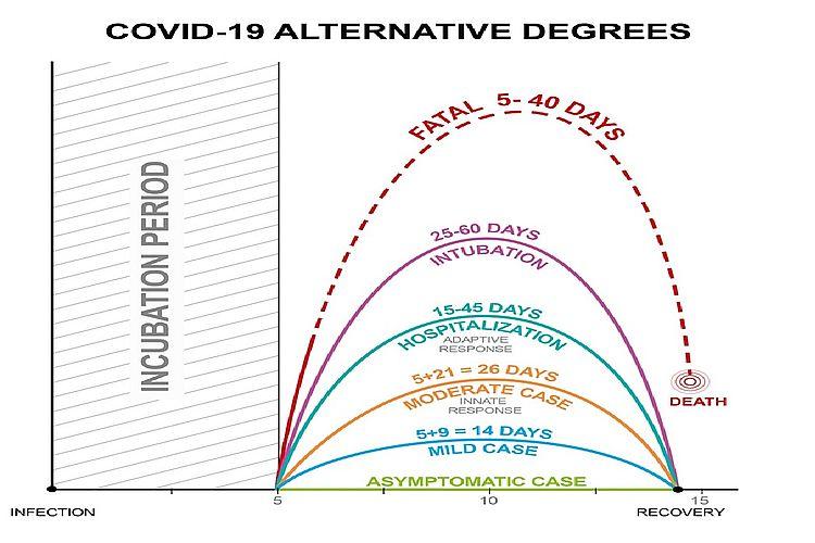 Covid-19 Alternative degrees
