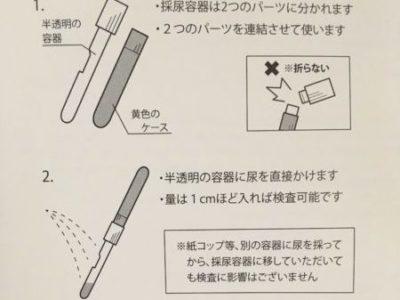 エクオール検査の採尿方法
