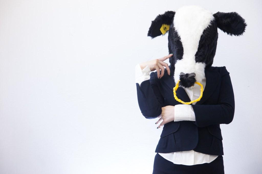生きるの使い分けに悩む牛