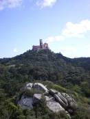 Palácio da Pena as seen from the opposite hill of Castelo dos Mouros!