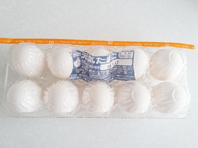 コスモス:卵