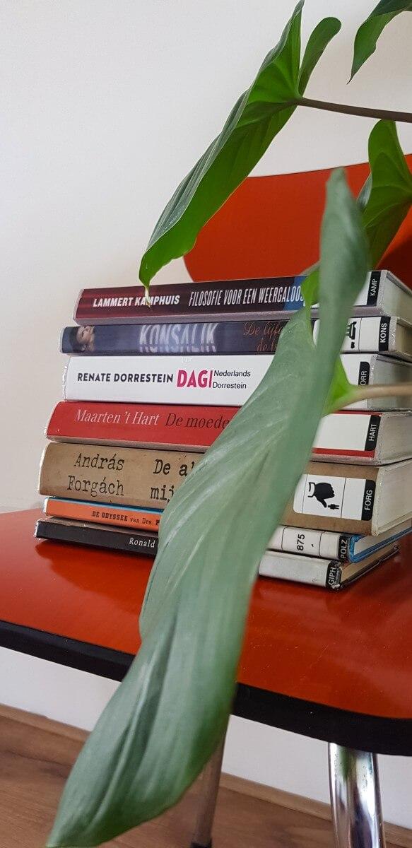 Boeken minimaliseren - koop geen nieuwe boeken meer