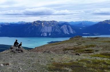 en pleine contemplation au sommet de nares mountain