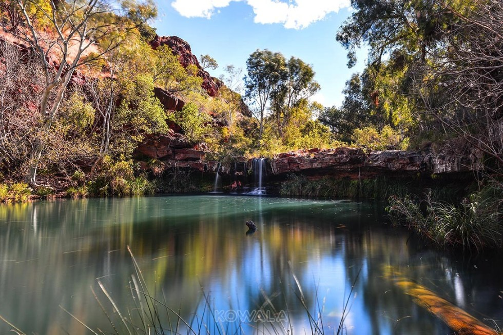 Fern pool karijini national park western australia pvt