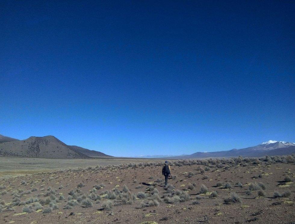 Parc de Sajama, Bolivie.