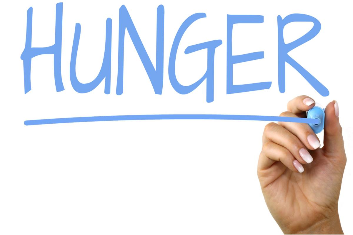 'Hunger hormone' ghrelin affects monetary decision making