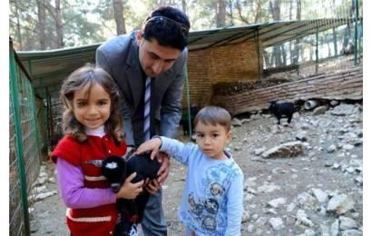 Cüce Keçiler Hayvanat Bahçesinin Maskotu Oldu