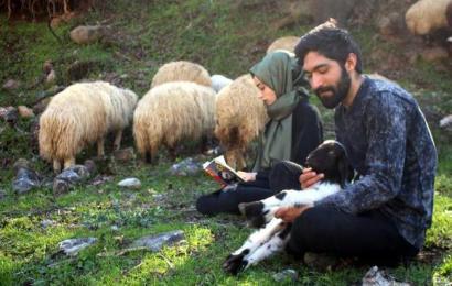 'Genç Çiftçi' Projesiyle 20 Koyun Alan Lise Mezunu Çift Çobanlık Yapıyor