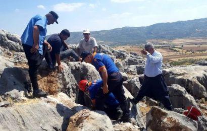 Kayalıklarda Kuyuya Düşen Keçi Kurtarıldı