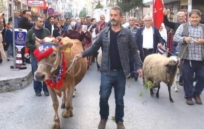 Yayla Şenliği yaşasın diye hayvanlarla caddelerde yürüdüler