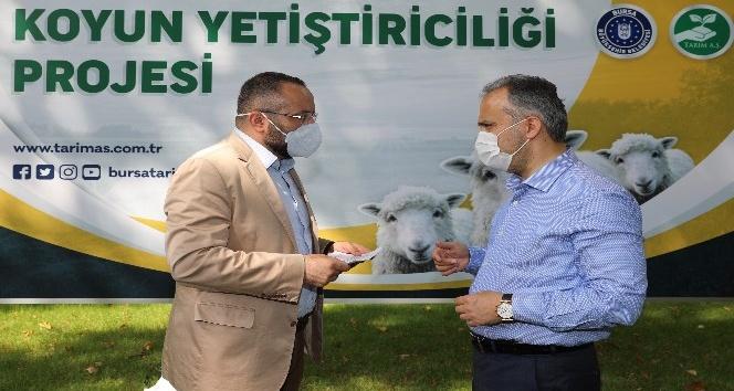 """Bursa'da """"Koyun Yetiştiriciliği Projesi"""" başladı"""