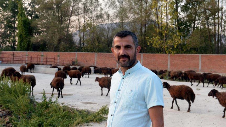 'Genç Çiftçi Projesi' sayesinde 300 koyunluk sürüsü oldu