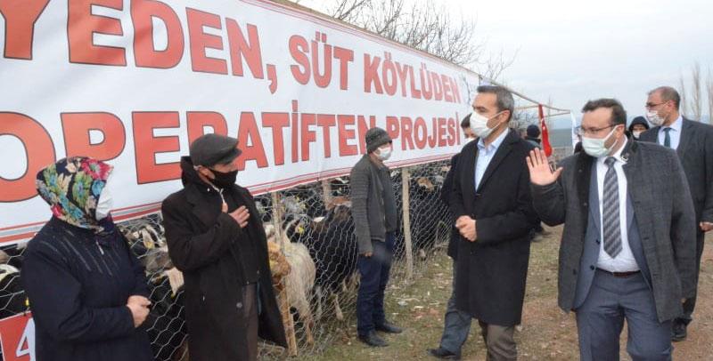 Keçi belediyeden, süt köylüden, peynir kooperatiften…