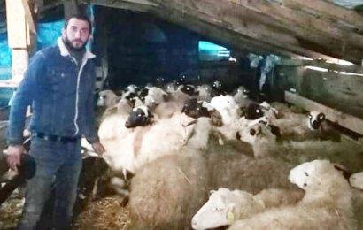 Köyde aç koyunlarıyla mahsur kaldı