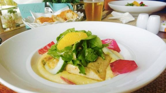 Steak de Dorade grillée au citron, sur lit de mousseline, avec méli-mélo de salade.